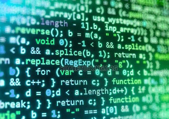 Hỗ trợ ngôn ngữ lập trình