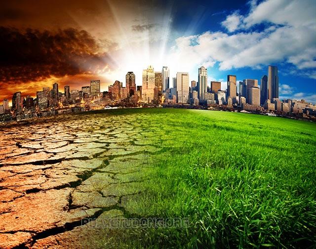 hệ sinh thái là gì