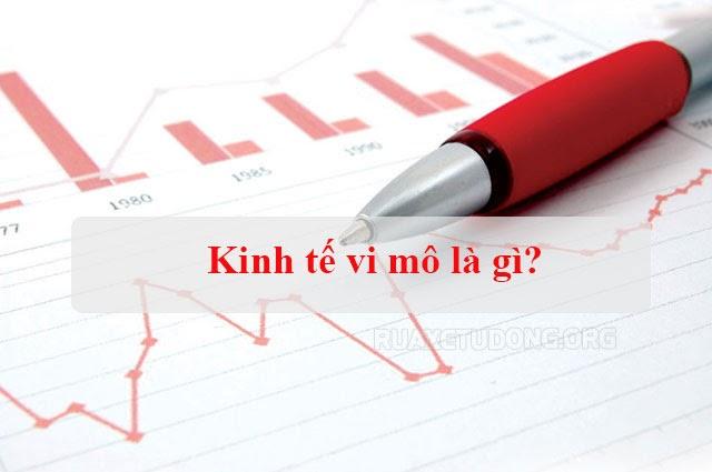 kinh tế vi mô là gì