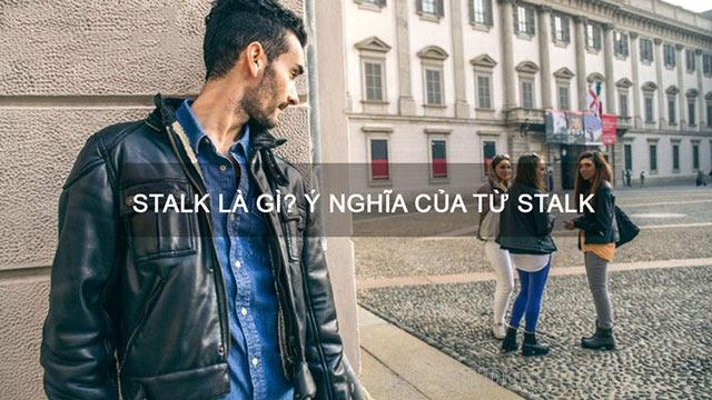 stalk là gì