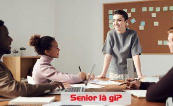 senior là gì
